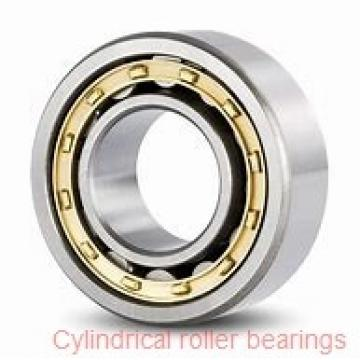 35 mm x 62 mm x 14 mm  35 mm x 62 mm x 14 mm  NTN NU1007 cylindrical roller bearings