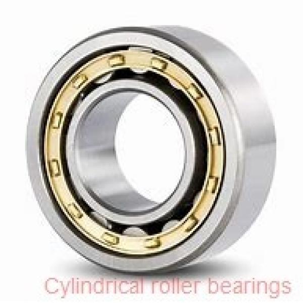 380 mm x 560 mm x 135 mm  380 mm x 560 mm x 135 mm  INA SL183076-TB cylindrical roller bearings #1 image